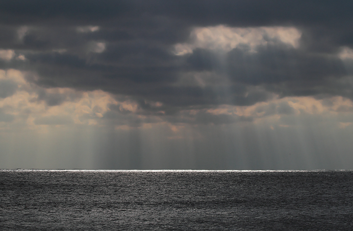 A dramatic view from Assateague Island, Maryland (12/5/2010). Photo by Bill Hubick.