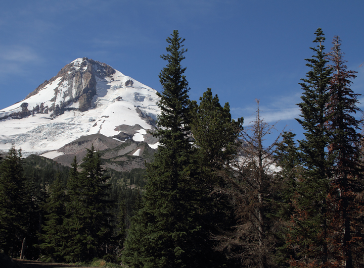 Mount Hood as viewed from near Cloud Cap (9/2/2010). Photo by Bill Hubick.
